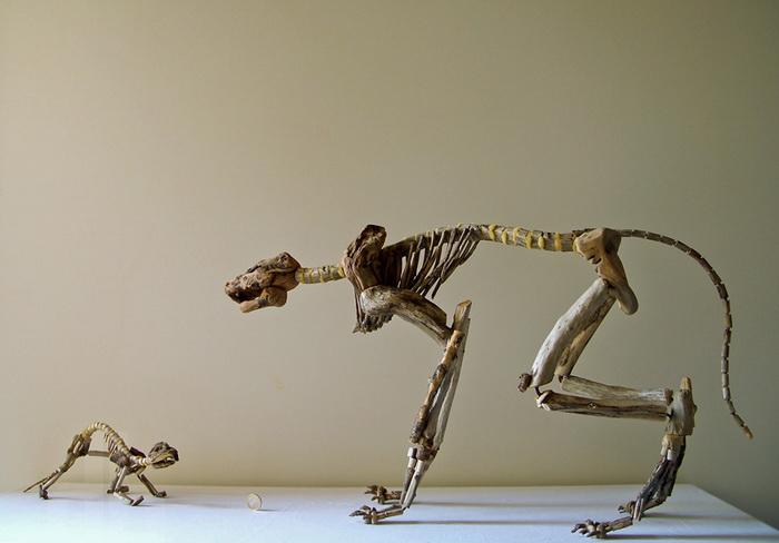 Коллекция скелетов Fragile Skeletons