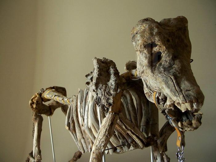Скелеты из дерева Fragile Skeletons