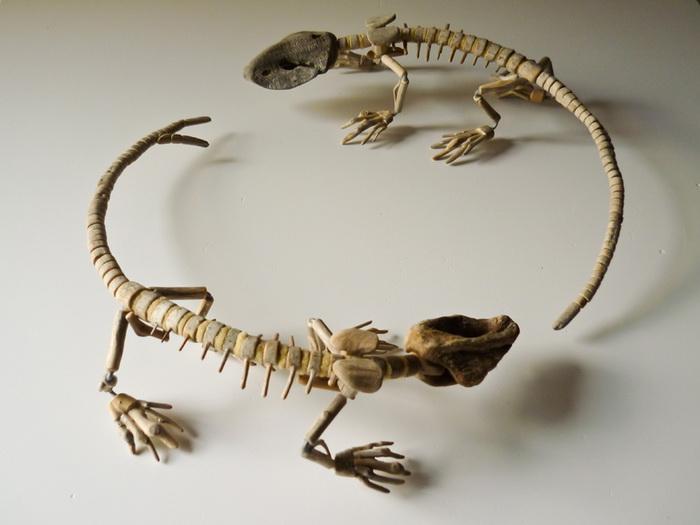 Деревянные ящерицы Fragile Skeletons