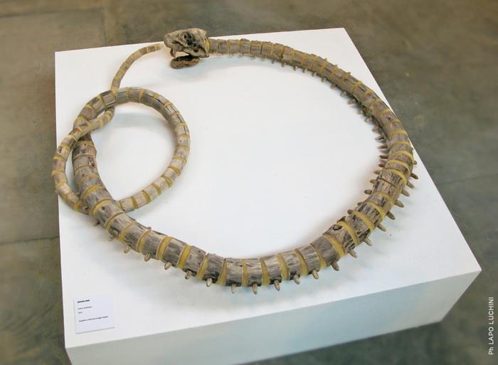 Деревянная змея из коллекции Fragile Skeletons