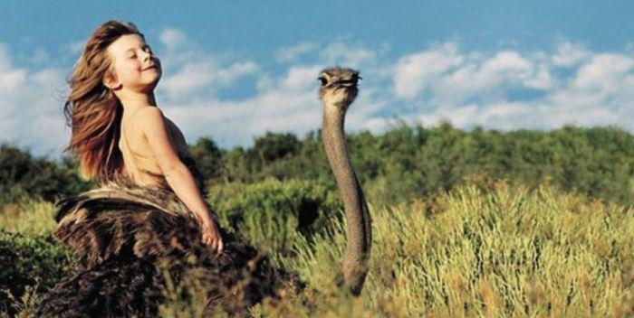 Tippi Degre и страус