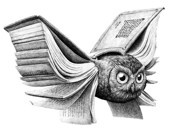 Мудрая сова от Redmer Hoekstra