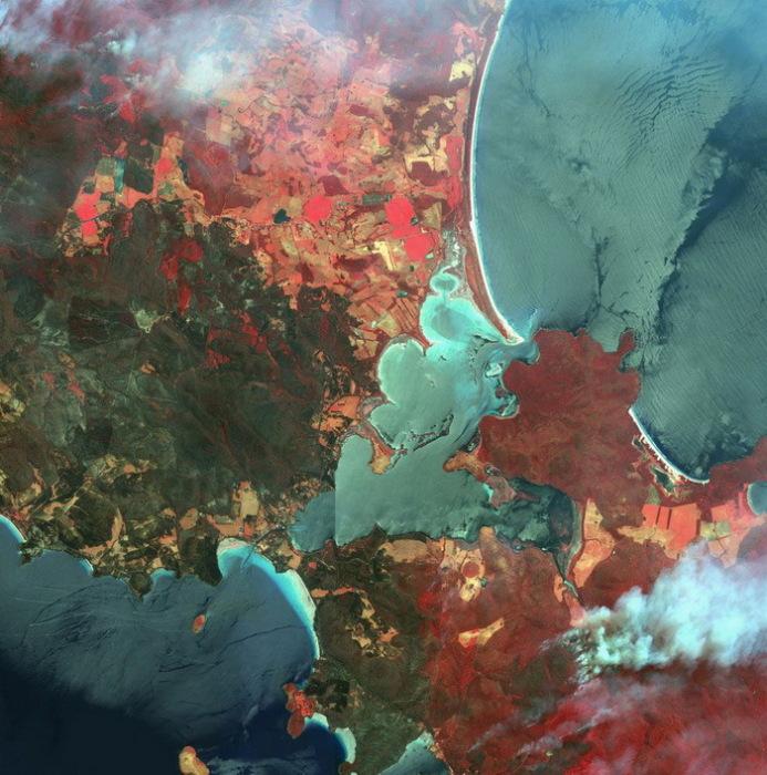 Вид лесного пожара со спутника