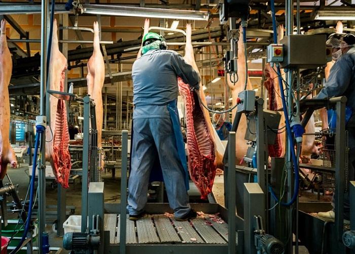 Производство мяса на  Mayhem