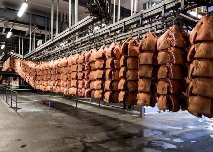 Мясо на скотобойне Mayhem