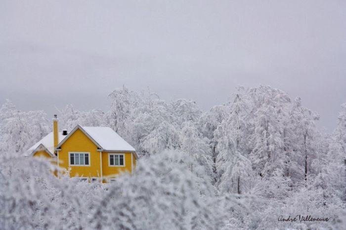 Лучшие зимние фотографии