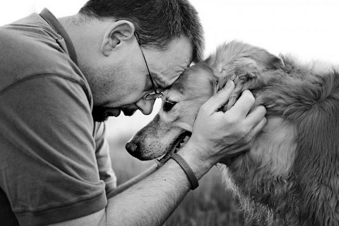 Фотосессия прощания собак с хозяевами