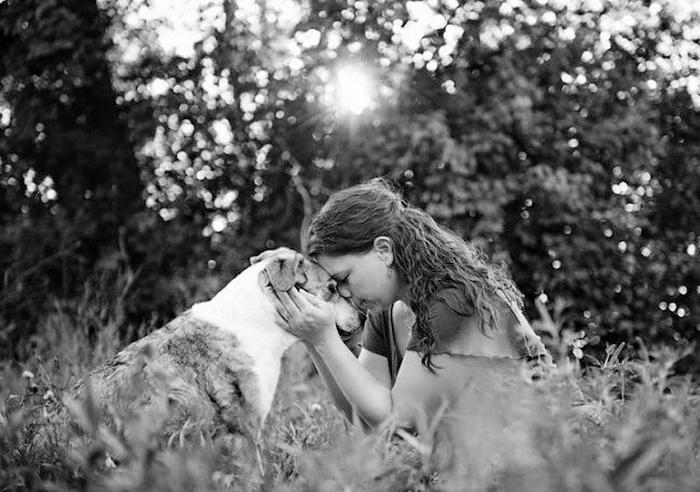 Прощание владельцев и собак перед усыплением