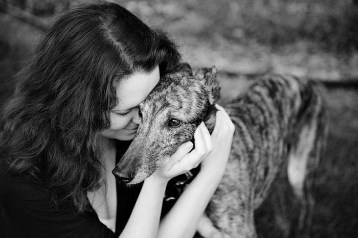 Собаки и владельцы: прощание