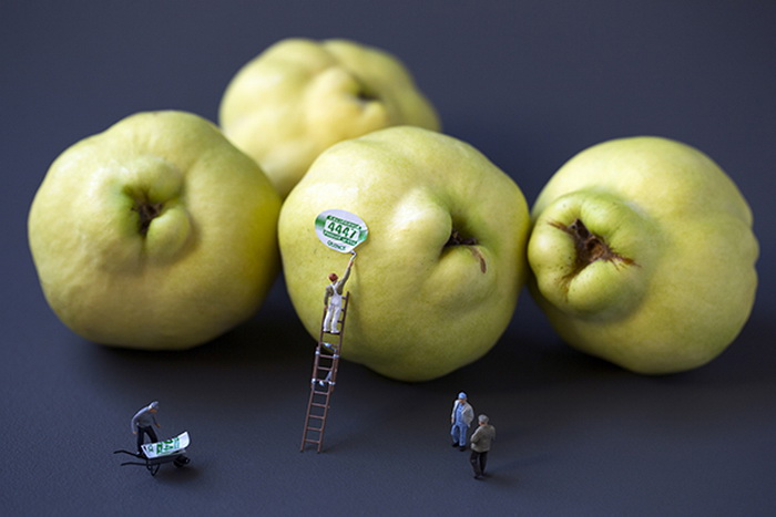 Штамповка яблок
