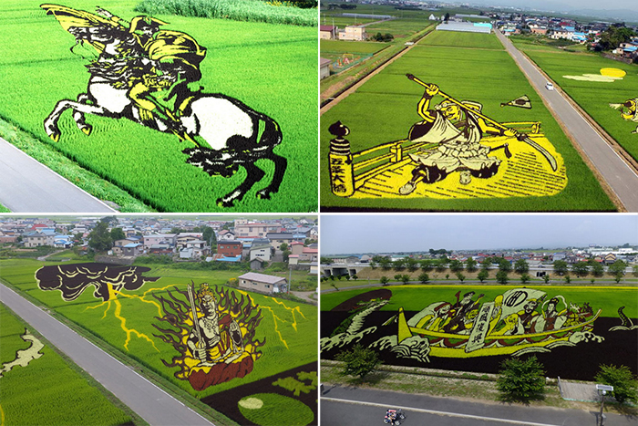 http://www.kulturologia.ru/files/u16342/tanbo-japanese-rice-field-art-0.jpg