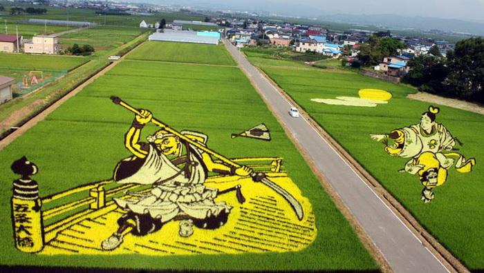 Рисовые поля Японии как произведение искусства