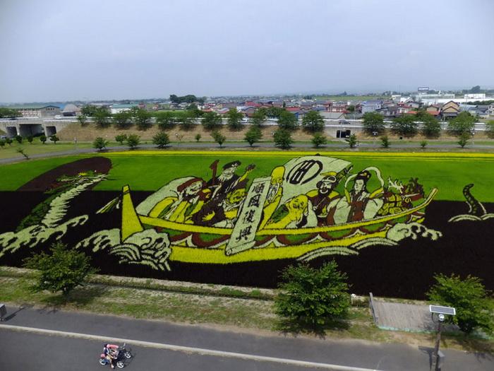 Рисовые поля - произведения искусства