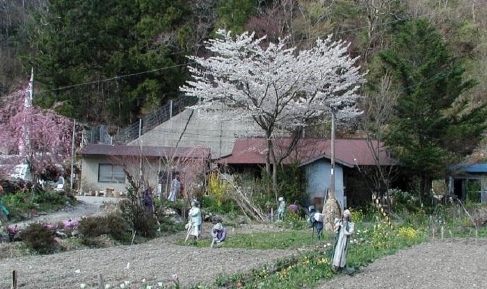 Деревня Nagoro.