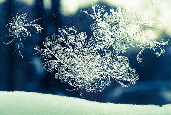Зима в Америке: пейзажи замерзающего континента