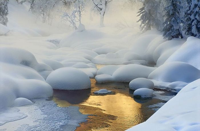 Фотограф Dmitry Dubikovskiy