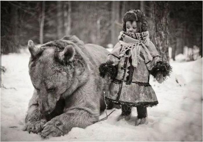 В России по улицам ходят медведи