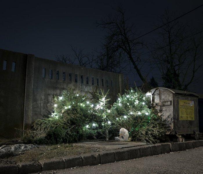 «После Рождества» («After Christmas»), Gergo Gosztom