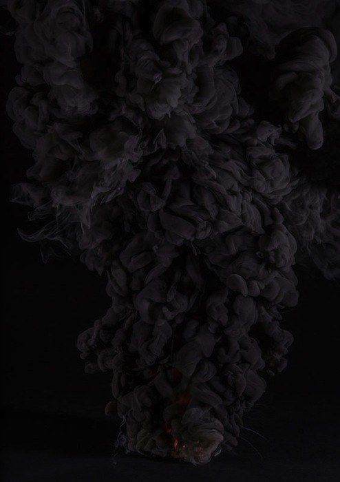 Встречный огонь (встречный пал, отжиг) — способ тушения лесных и степных пожаров, при котором пущенный навстречу огонь сжигает горючие материалы на пути основной стены огня.