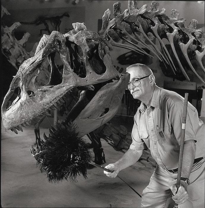 Протиральщик динозавров.