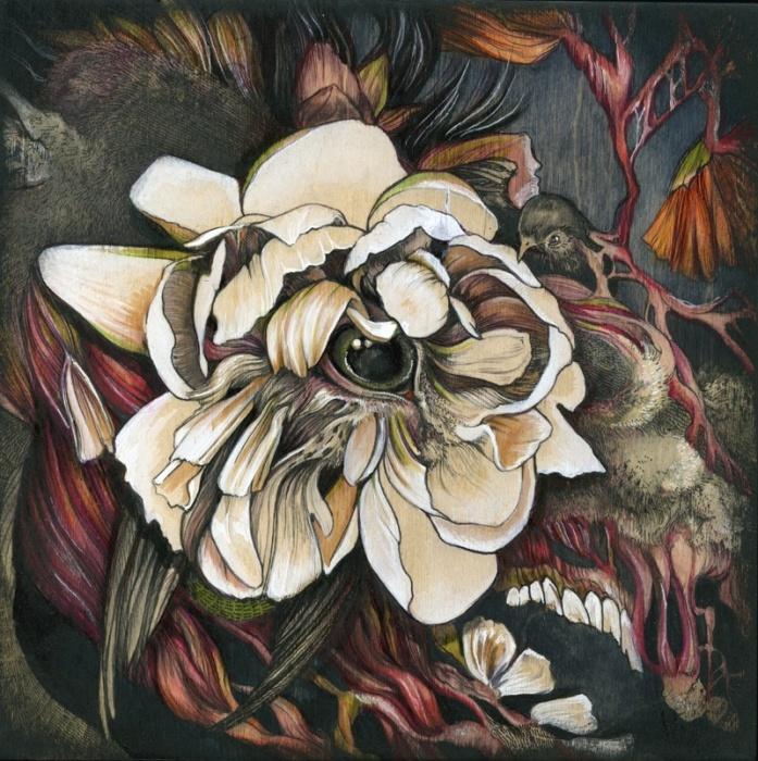 Лошадиный цветок (Horseflower)
