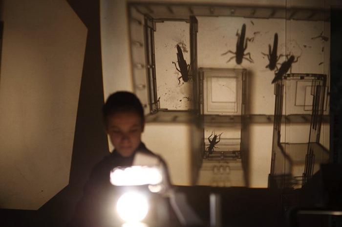 Посетители выставке в мире гигантских насекомых