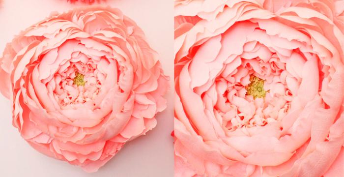 «Головки» («Heads»): бумажные цветы Тиффани Тёрнер