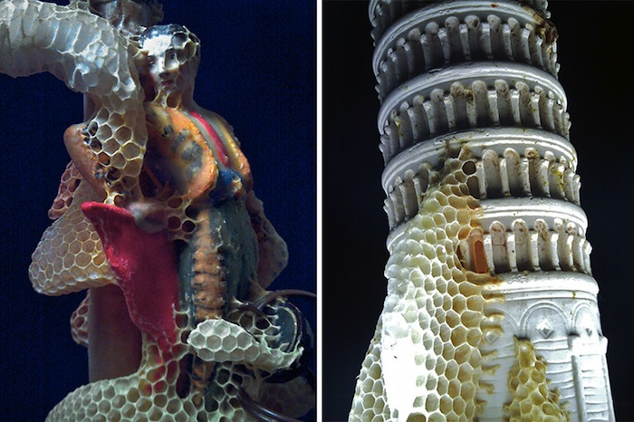 Аганета Дайк (Aganetha Dyck): скульптуры, покрытые пчелиными сотами