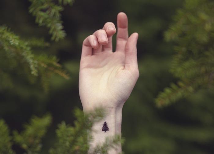 «Крошечные татуировки» («Tiny Tattoos») Остина Тотта