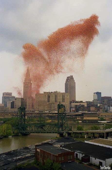 Огромное коричнево-красное облако над городом со стороны выглядит скорее зловеще, чем празднично