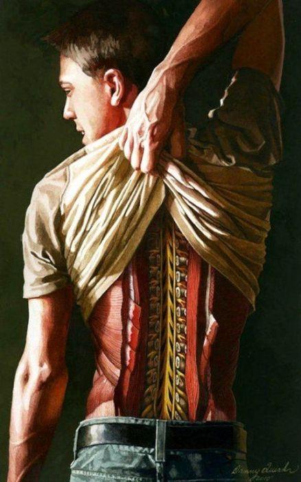Рассечение частей тела, автор - Дэнни Куирк (Danny Quirk)