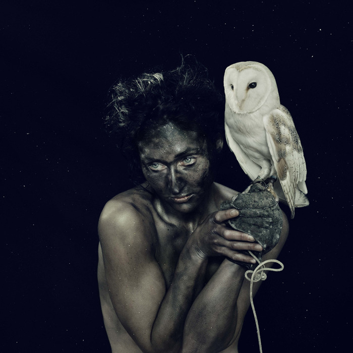 Парад теней, автор - Николь Визиоли