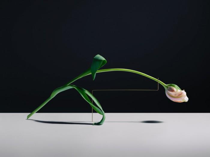 Потрясающий фото-проект от Карла Кляйнера (Carl Kleiner).