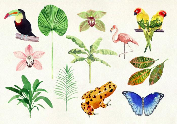 Картина Tropics Paper от Марселя Джорджа (Marcel George).