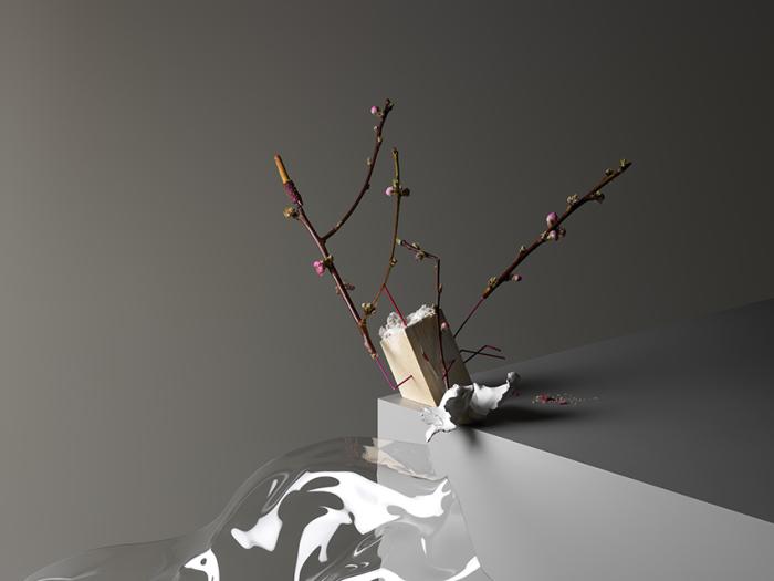 Экстравагантные композиции от Карла Кляйнера (Carl Kleiner).