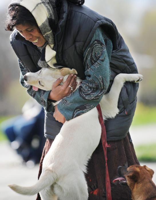 Белый пес и его заботливая хозяйка.