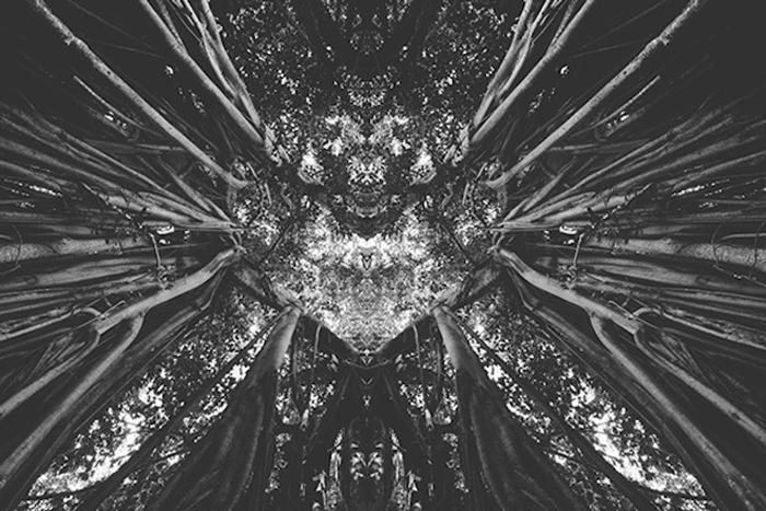 Симметрия в работах французского фотографа.