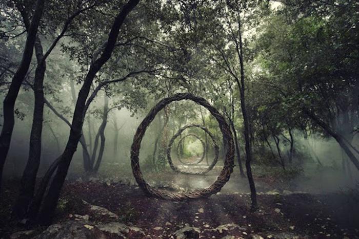 Сказочный лес от Спенсера Байлса (Spencer Byles).