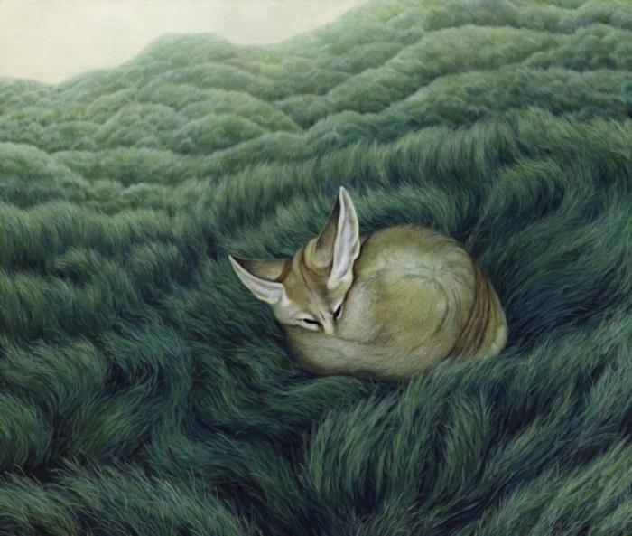 Спящая лиса на картине Moki Mioke.