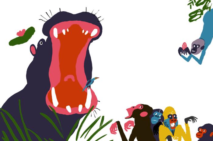 Забавные красочные иллюстрации от Gwendal le Bec.