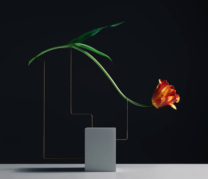 Изящные цветочные композиции от Карла Кляйнера (Carl Kleiner).