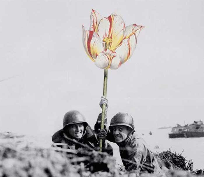 Цветы вместо оружия на фото-коллажах от Мистера Блика (Mister Blick).