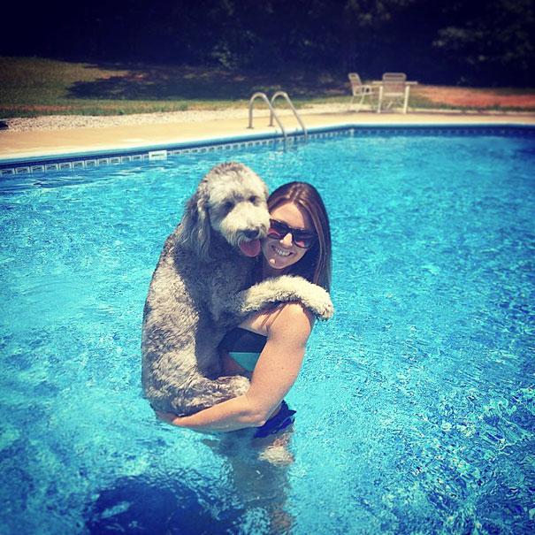 Пес и его хозяйка купаются в бассейне.