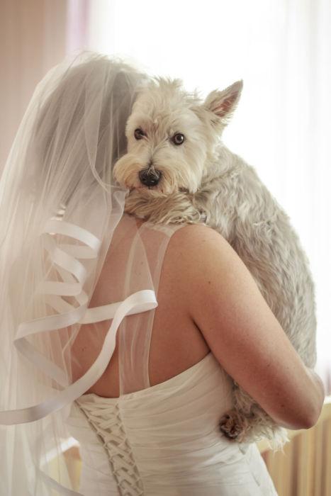 Невеста и ее лучший друг.