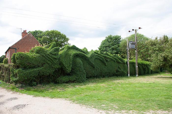 Гигантский дракон из зелени от Джон Брукер (John Brooker).