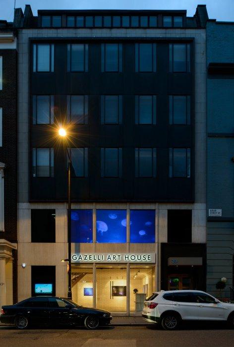 Gazelli Art House в Лондоне.
