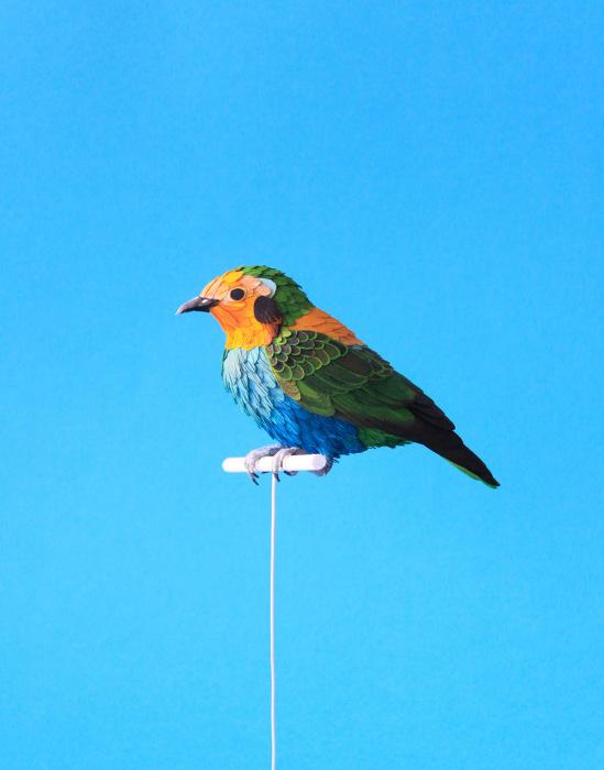 Бумажные скульптуры в виде птиц от Дианы Белтран Херрера (Diana Beltran Herrera).