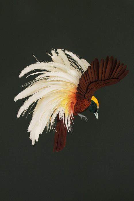 Бумажные птички от Дианы Белтран Херрера (Diana Beltran Herrera).