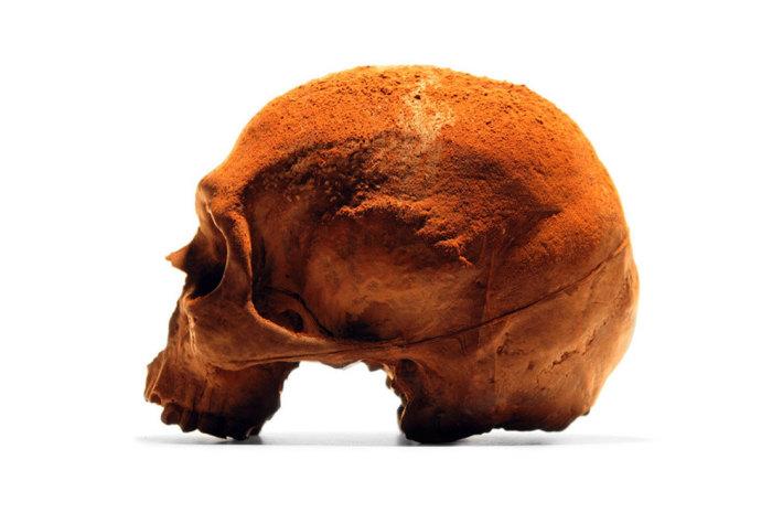 Шоколадный череп от BlackChocolateCo.