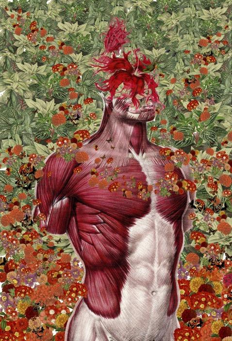 Яркие анатомические коллажи от Трэвис Бредель (Travis Bedel).